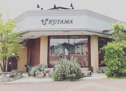 koyama3.jpeg