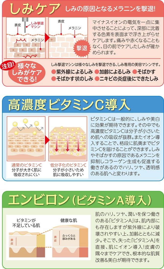 simibihaku_web3980-3-670.jpg