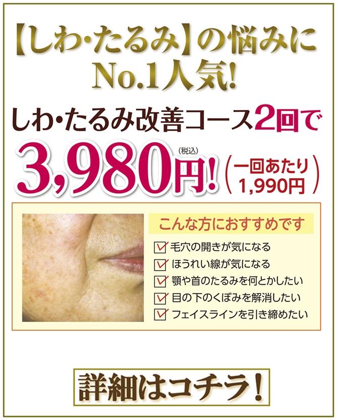 siwatarumi2kai-3980-bana-670.jpg