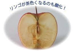 yjimage11.jpg